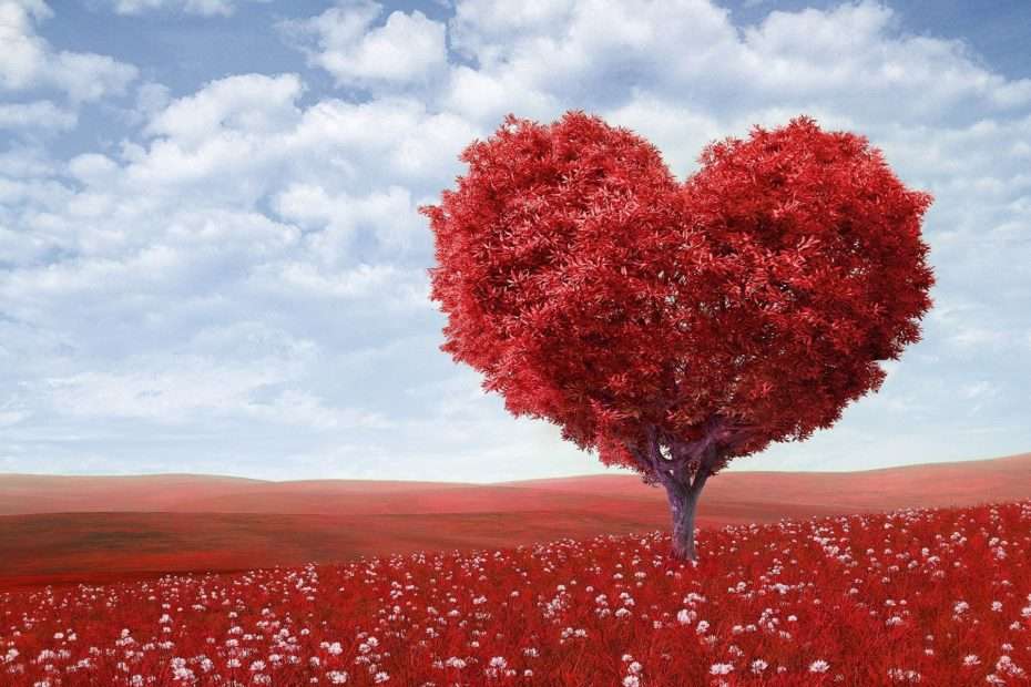 Baum in Herzform