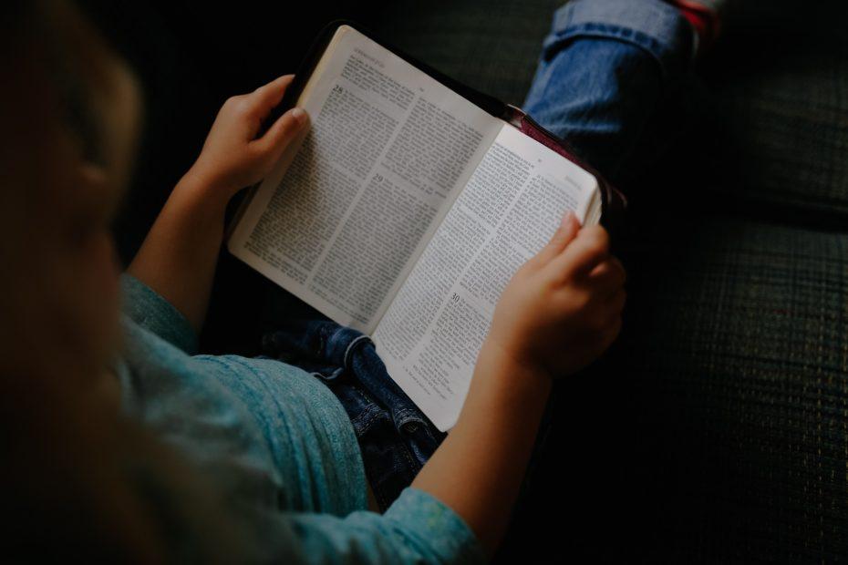 Bibelleser