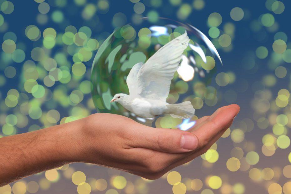 weiße Taube in Glaskugel